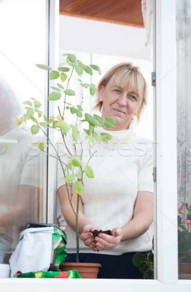 Lady adding soil in pot Stock photo © d13