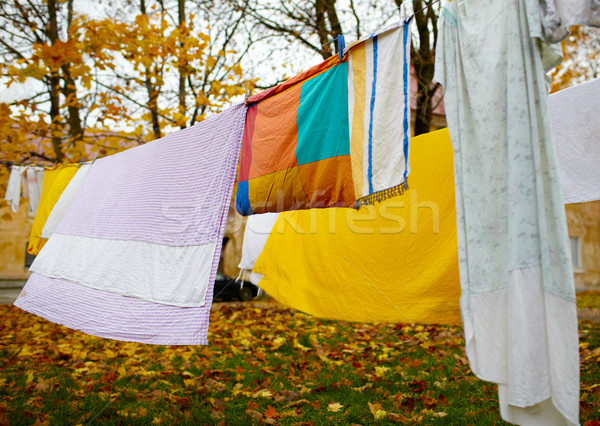 Fényes színes vászon aszalt ki háttér Stock fotó © d13