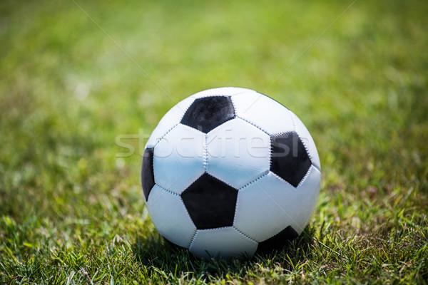 Tradicional balón de fútbol césped fútbol brillante sol Foto stock © d13