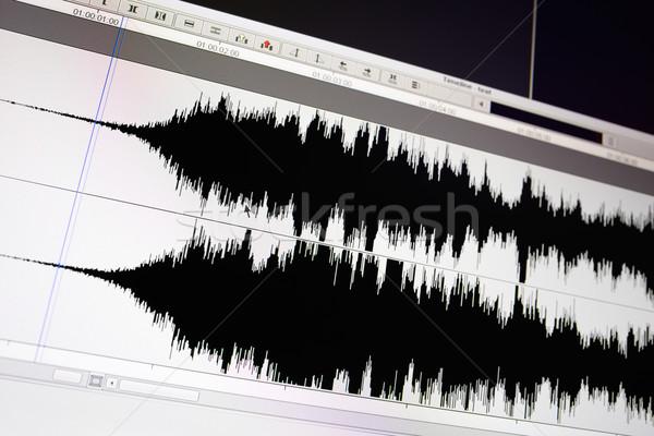 Waveform. Stock photo © d13