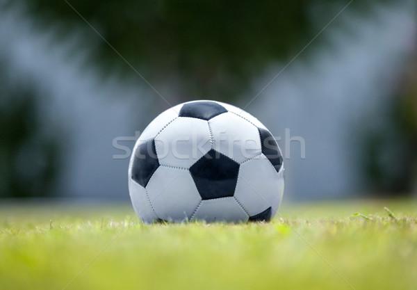 サッカー 緑の草 クローズアップ ショット サッカーボール 緑 ストックフォト © d13