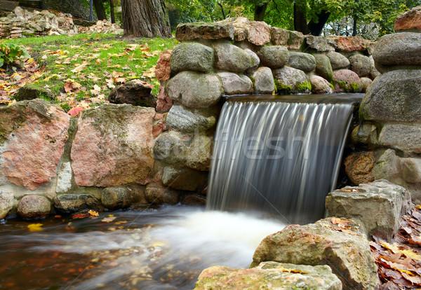 Kaskada parku długi czas ekspozycji wody lasu charakter Zdjęcia stock © d13
