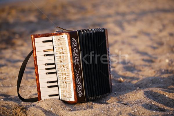 砂浜 立って 砂 ビーチ 自由奔放な 国 ストックフォト © d13