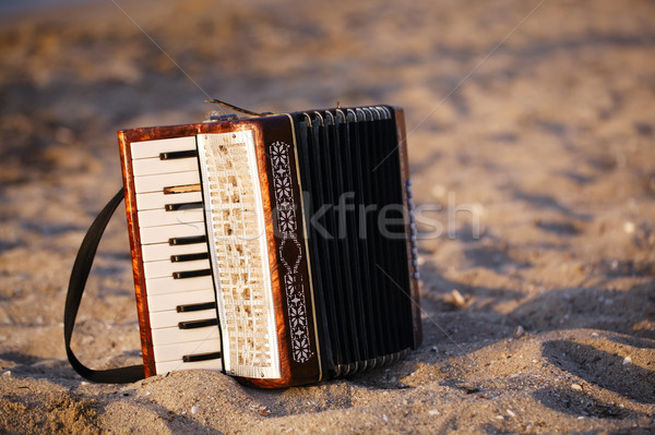 Playa de arena pie arena playa bohemio país Foto stock © d13
