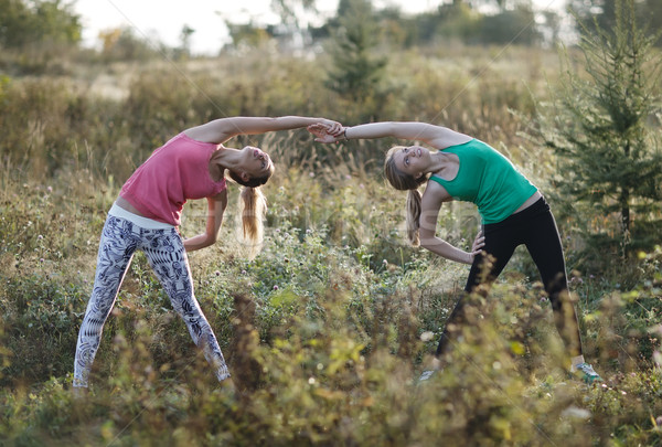 Two supple young women working out together Stock photo © d13