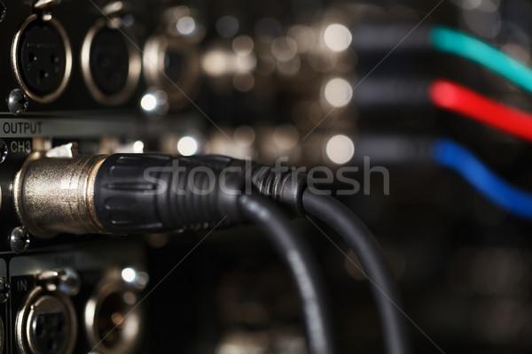 Audio kábelek furulya digitális hátsó panel Stock fotó © d13