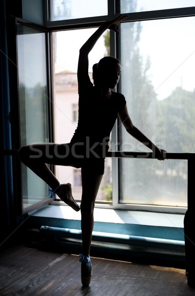 Ballet dancer exercising at the barre by window Stock photo © d13