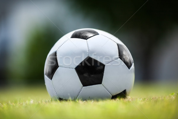 Soccer ball on green lawn Stock photo © d13
