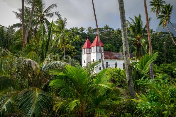 Kilise ada orman manzara fransız polinezya Stok fotoğraf © daboost