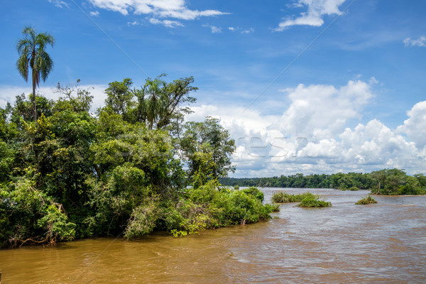 Parana river at iguazu falls Stock photo © daboost