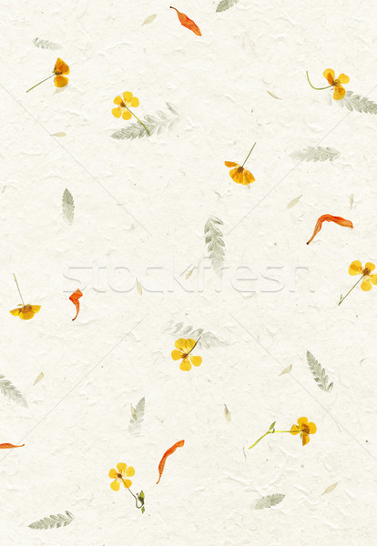 Handmade flower petal paper texture Stock photo © daboost