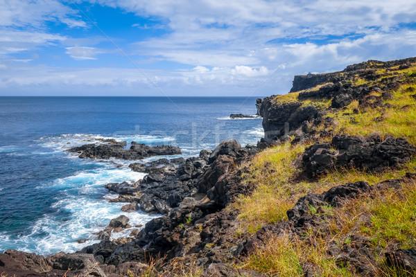 Ilha de Páscoa oceano paisagem Chile campo Foto stock © daboost