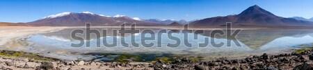 Clear altiplano laguna panoramic in sud Lipez reserva, Bolivia Stock photo © daboost