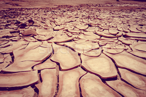 ひびの入った 地上 ラ 砂漠 詳細 テクスチャ ストックフォト © daboost