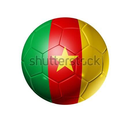 Voetbal voetbal bal Kameroen vlag 3D Stockfoto © daboost