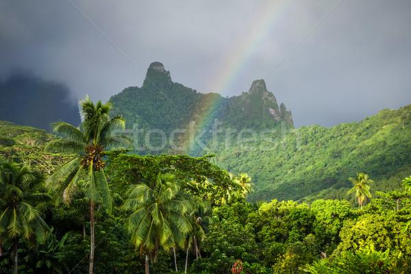 радуга острове джунгли гор пейзаж французский Сток-фото © daboost