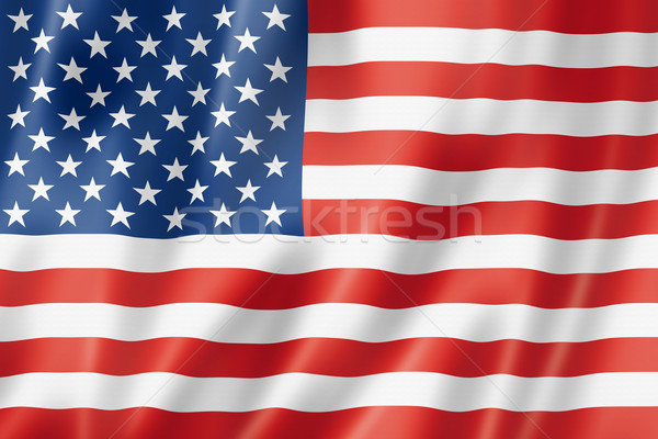 United States flag Stock photo © daboost
