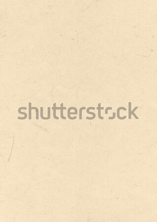 Natural recycled paper texture Stock photo © daboost