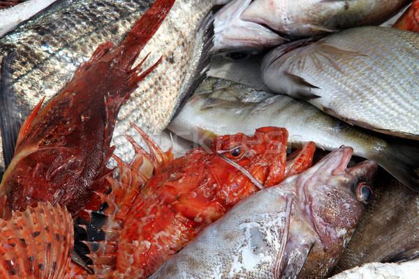 fish market Stock photo © daboost
