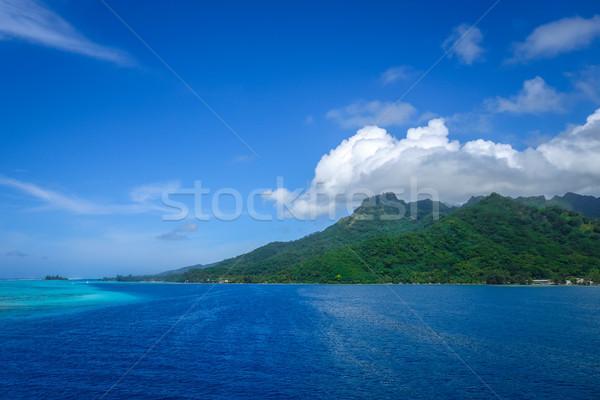Ada okyanus manzara fransız polinezya orman Stok fotoğraf © daboost