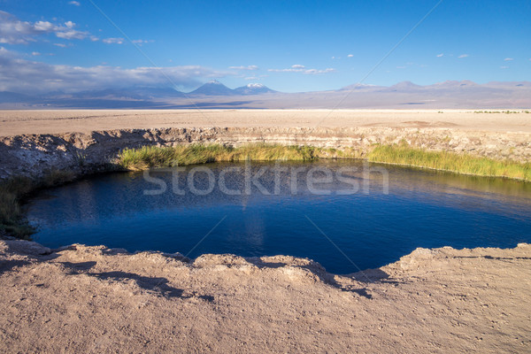 Ojos del salar landmark in San Pedro de Atacama, Chile Stock photo © daboost