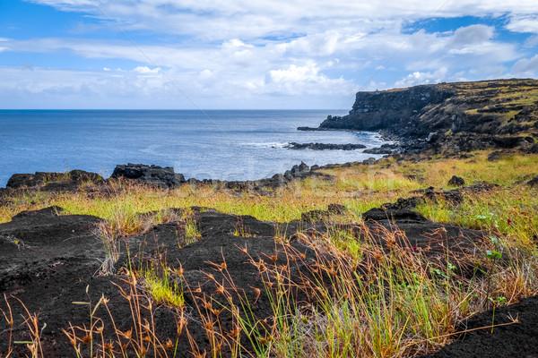 Páscoa ilha oceano paisagem campo Foto stock © daboost