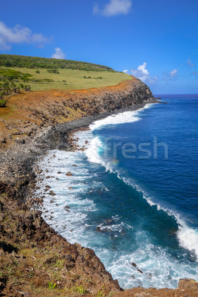 Cliffs on Rano Kau volcano in Easter Island Stock photo © daboost