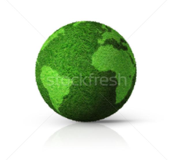 3D green grass globe Stock photo © daboost