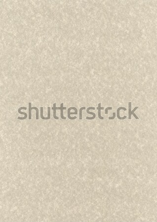 Natural parchment recycled paper texture Stock photo © daboost
