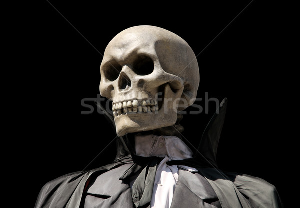 grim reaper. death's skeleton Stock photo © daboost