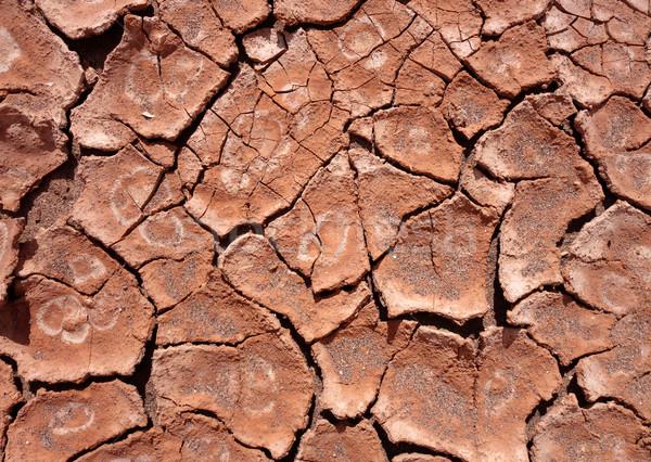 泥 テクスチャ 地球温暖化 砂漠 壊れた ストックフォト © daboost