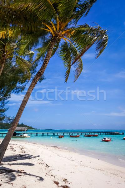 Areia branca praia pier ilha francês polinésia Foto stock © daboost