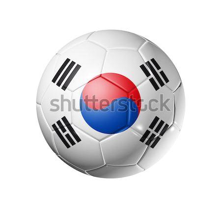 Futbol futbol top Güney Kore bayrak 3D Stok fotoğraf © daboost