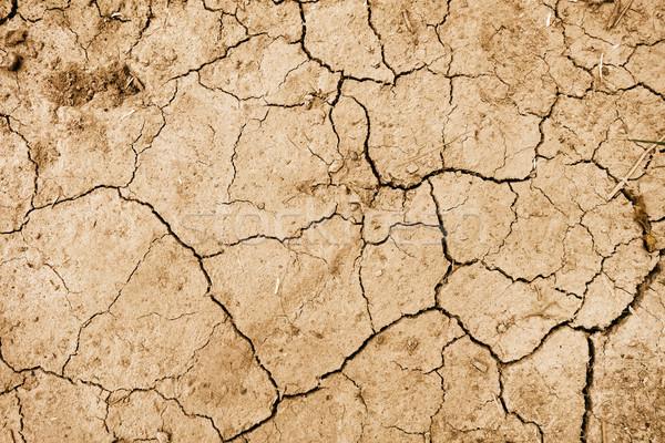 Sécher boue texture réchauffement climatique désert brisé Photo stock © daboost