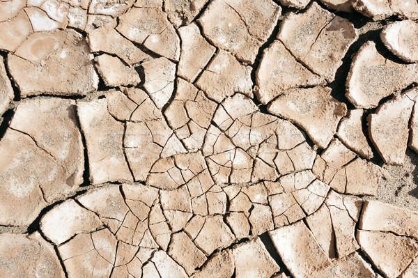 Asciugare fango deserto texture rotto Foto d'archivio © daboost