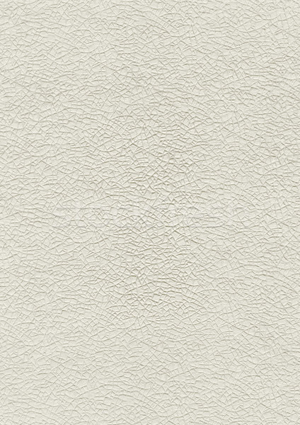 embossed paper texture background Stock photo © daboost