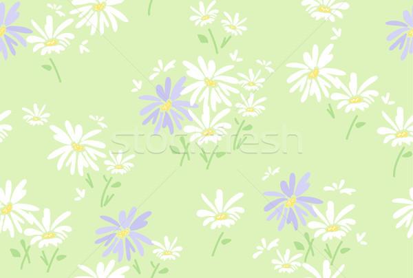 Vecteur floral modèle camomille fleurs Photo stock © Dahlia
