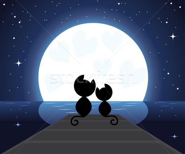 Dois gatos amor vetor assistindo lua Foto stock © Dahlia