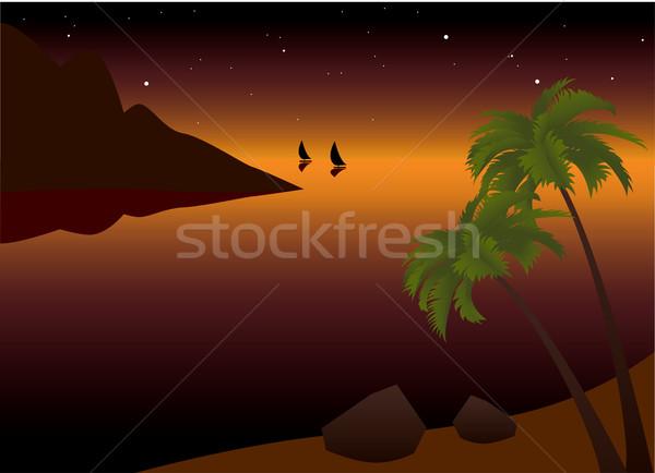 Vetor tropical palma praia oceano pôr do sol Foto stock © Dahlia