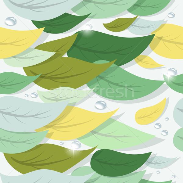 Renkli ağaç yaprakları su damlası vektör Stok fotoğraf © Dahlia