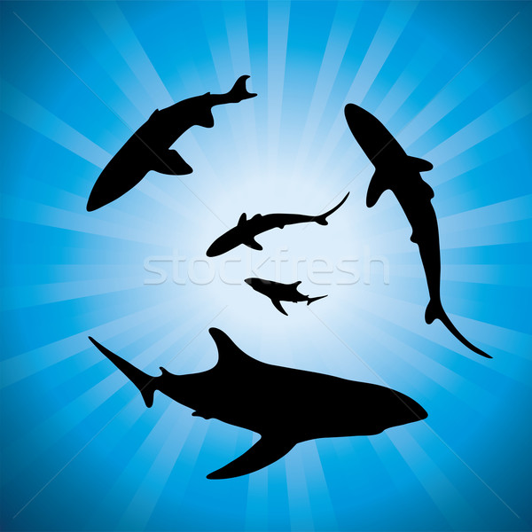 vector silhouettes of sharks underwater and sunlight Stock photo © Dahlia