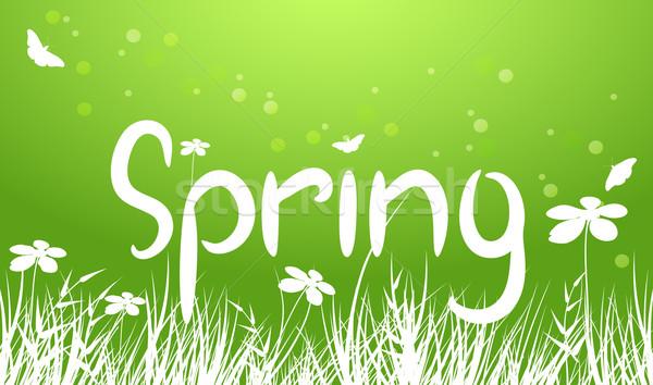 Vector verde primavera hierba resumen naturaleza Foto stock © Dahlia