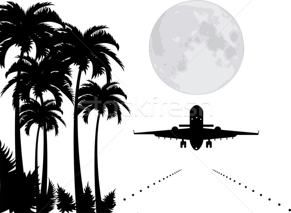 vector palms, moon and plane over runway  Stock photo © Dahlia