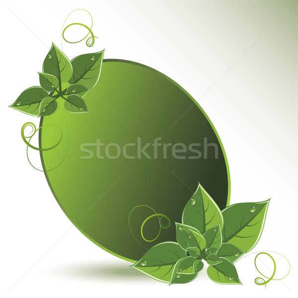 ベクトル 緑の葉 エコ デザイン ツリー 抽象的な ストックフォト © Dahlia