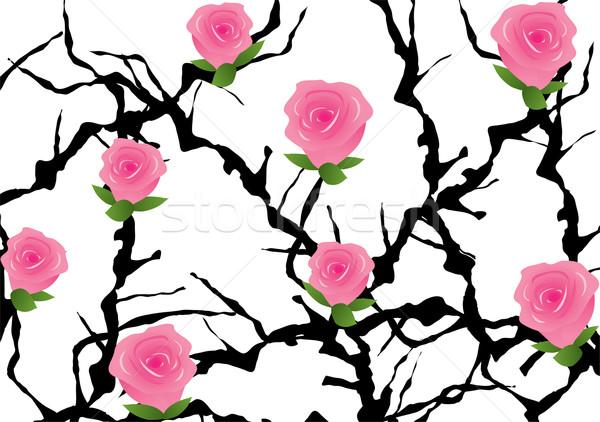 blackthorn bush with roses Stock photo © Dahlia