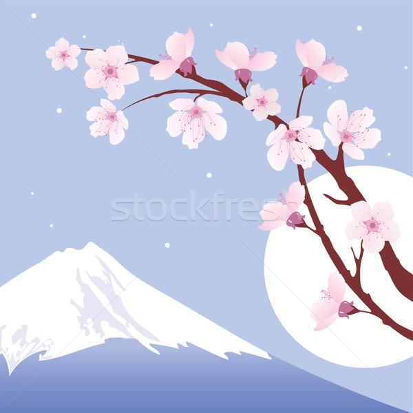 Vetor Monte Fuji lua sakura cereja Foto stock © Dahlia
