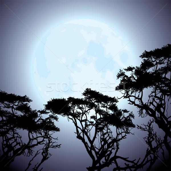 Vetor lua silhuetas árvore grande Foto stock © Dahlia