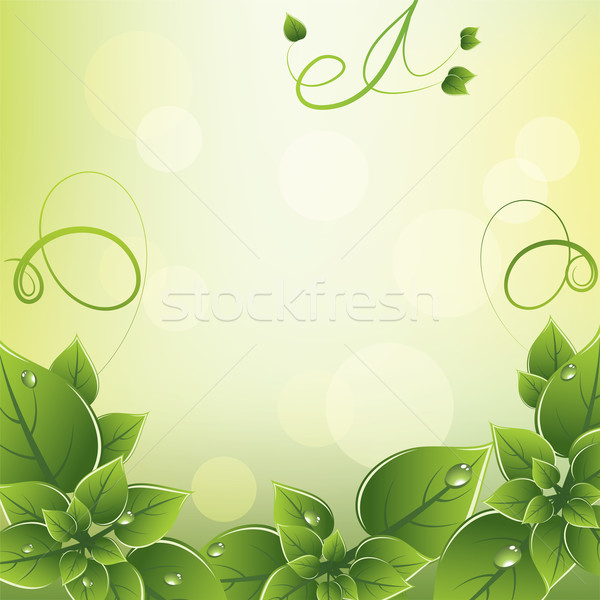 vector frame with fresh green leaves Stock photo © Dahlia