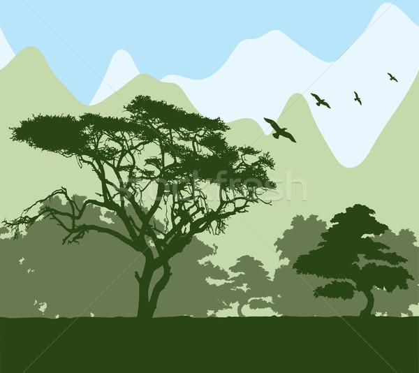 Vektör orman dağlar dağ kuş seyahat Stok fotoğraf © Dahlia