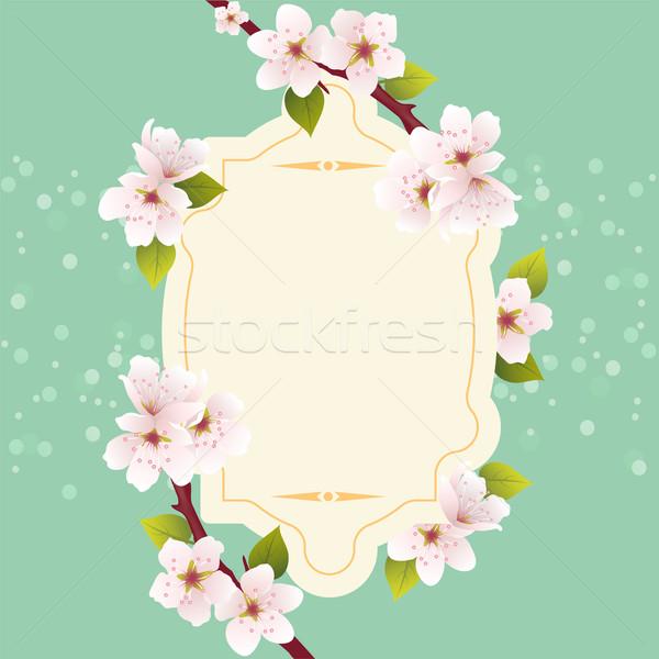 Vektör bahar tebrik kartı kiraz çiçekler çiçek Stok fotoğraf © Dahlia
